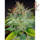 WOS Skunk 47 Seeds Legend Collection Seeds 3er