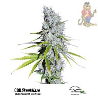 Dutch Passion CBD Skunk Haze Seeds 5er