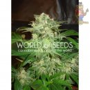 WOS Mazar Kush Seeds Legend Collection Seeds 3er