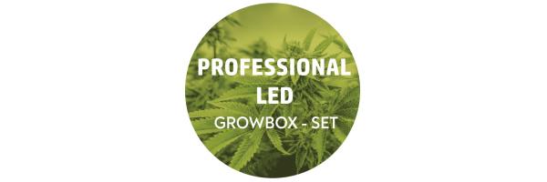 Professional LED