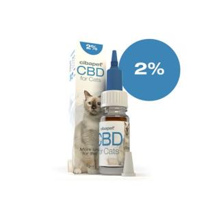 CBD Öl für Katzen 2%