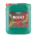 Canna Boost Accelerator - 10 Liter