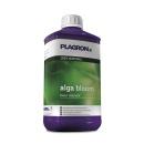 Plagron Alga Blüte - 0,5 Liter
