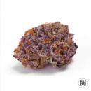 Bulk Seed Bank - Purple Glam Kush