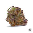 Bulk Seed Bank - Auto Purple Glam Kush