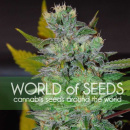 WOS Space Legend Collection Seeds 7er