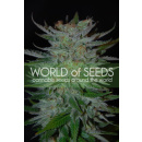 WOS New York 47 Seeds Legend Collection Seeds 7er